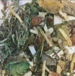 Herbal tea poisoned
