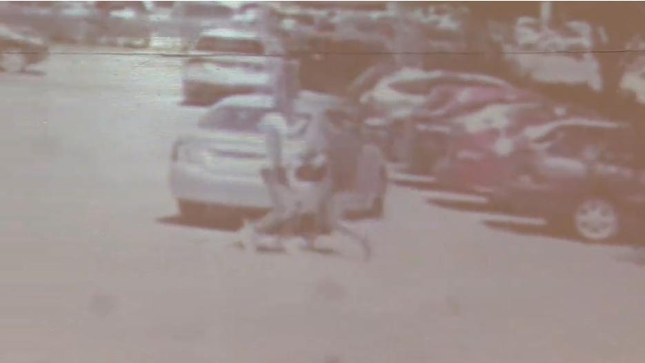 Houston Chinatown Robberies